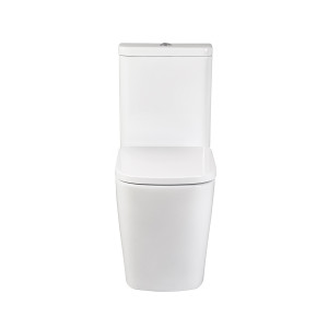 Modo Flush-to-Wall Toilet with Soft-Close Seat